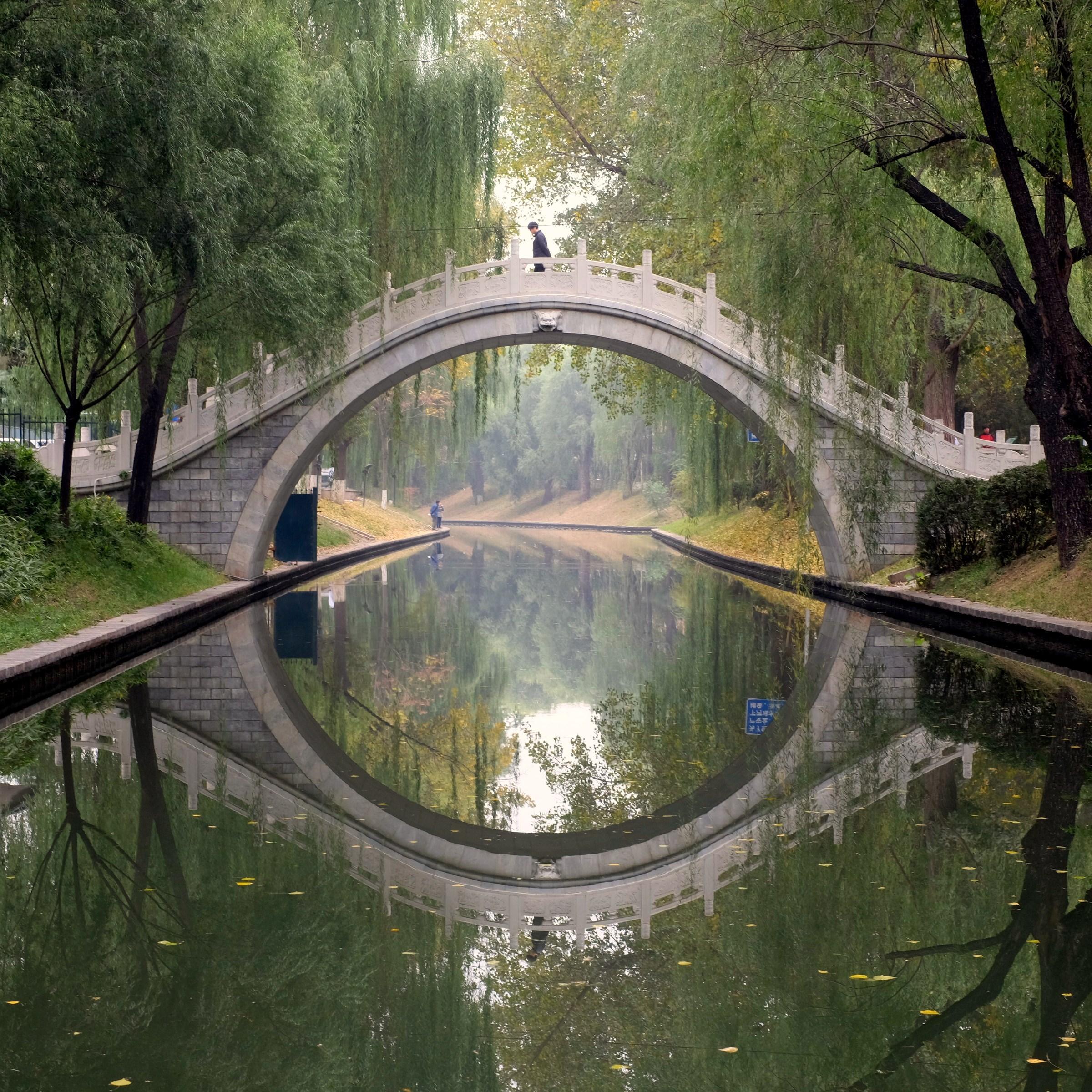FG ZiZhuZuan + WanShouSi