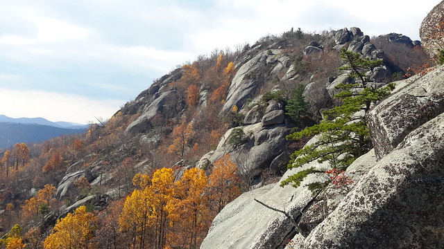 Part of the rock scramble up Old Rag