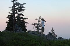Grayback Mountain