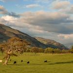 Fathew Valley, Snowdonia (1)