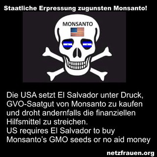 USA requires El Salvador to buy Monsanto GMO seeds or receive no more aid money - NETZFRAUEN.org in GERMANY