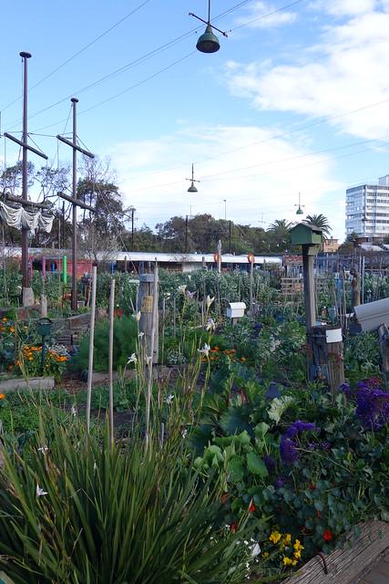 community garden and art studio Flickr Photo Sharing