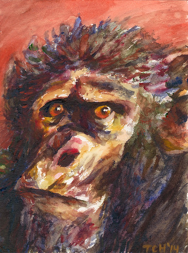 Chimp by Cleve Hicks
