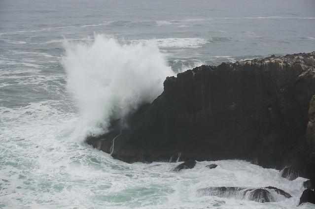 Yaquina Head, OR