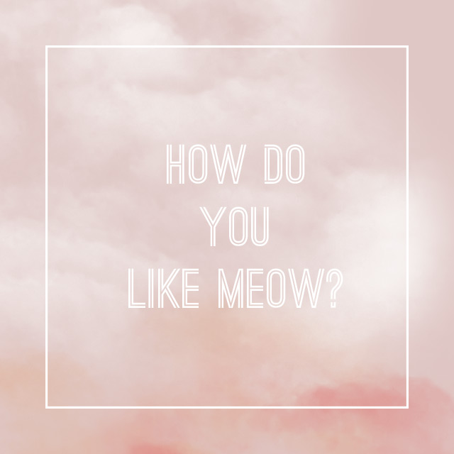 how do you like meow?, cat quote