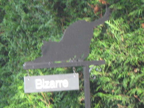 Bizarre house sign