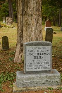 Jane Thoroman Treber