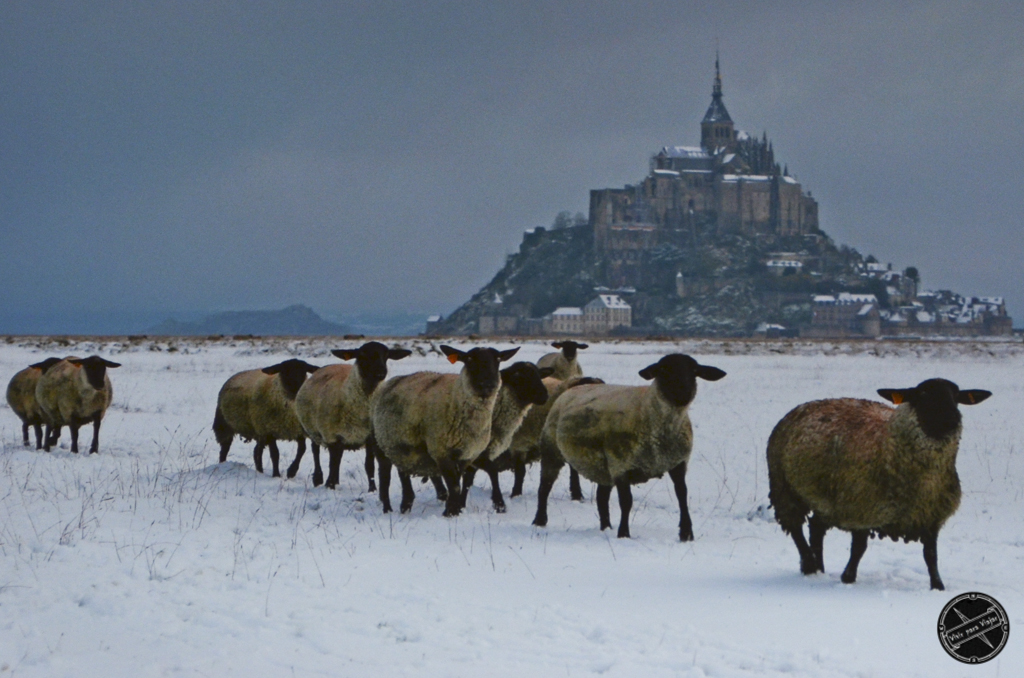 Monte Sant Michel-9969