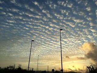 朝焼けの羊雲
