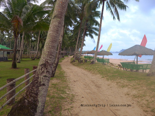 The road in front of Jack's Place in Nacpan Beach, El Nido, Palawan, Philippines