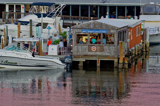 #HappyHour at Maximo Seafood Shack in #StPete