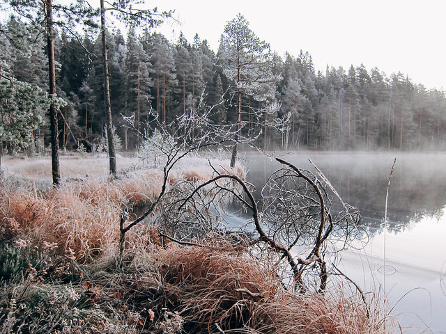 Helvetinjärvi