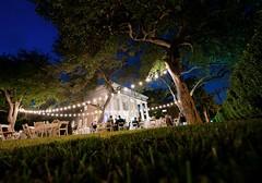 Neill Cochran House Wedding