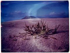 Desert makes love to us forever in the sand