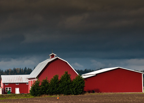 10-23-14 One Pumpkin and a Red Barn