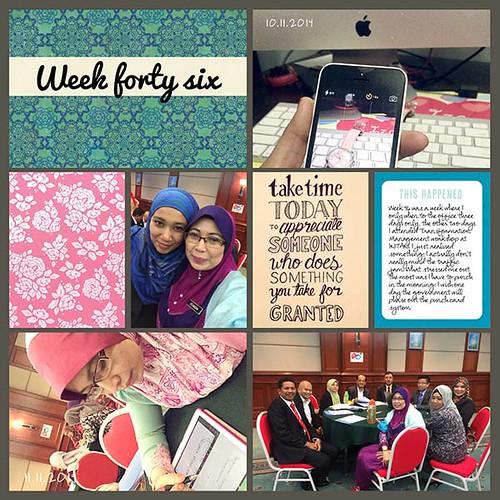 Week46-a-web