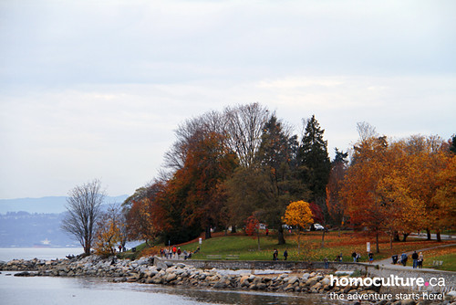 HomoCulture.ca posted a photo:	The autumn colours bursting at English Bay in downtown Vancouver.