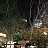 Bryant Park tonight with the Empire Stste Building towering above it.  Gorgeous fall night inthe big apple.  #bryantpark #empirestate #empirestatebuilding #mynyc #mynewyork #midtown #manhattan #holidayshopsatbryantpark #autumn #autumninnewyork #onmywayhom