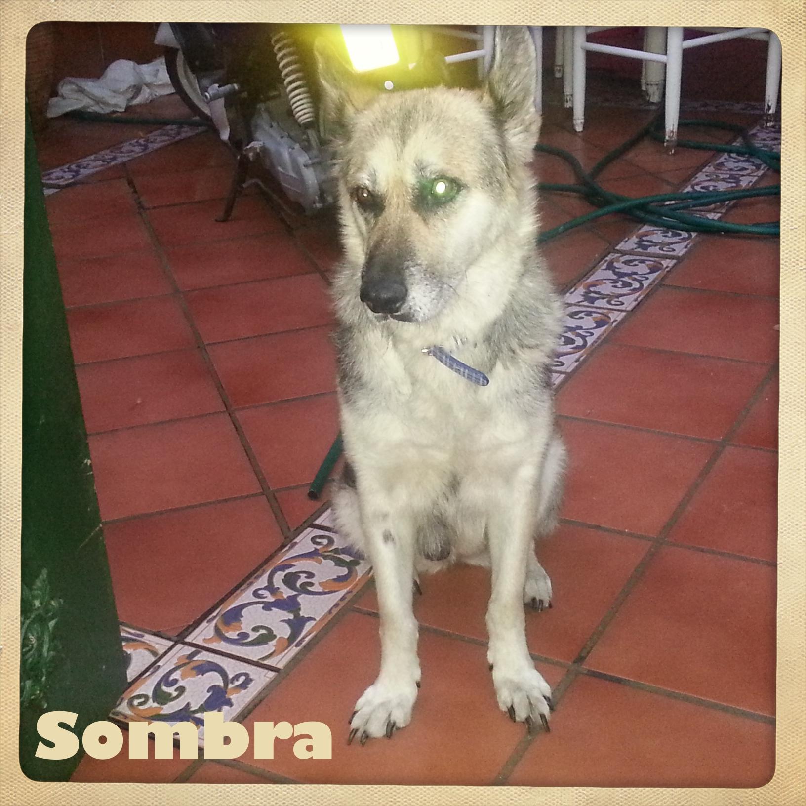 Sombra 7