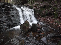Beeley Brook