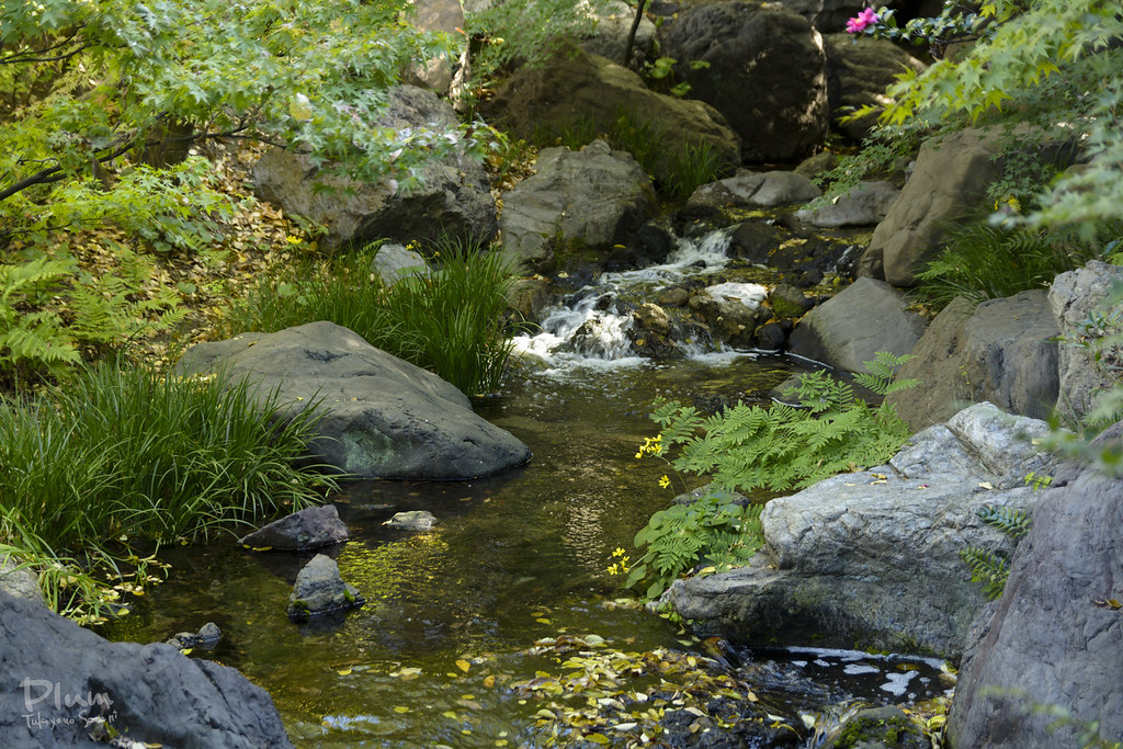Shirotori Garden-12