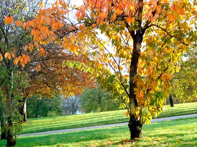 End fall in Lewisham, London