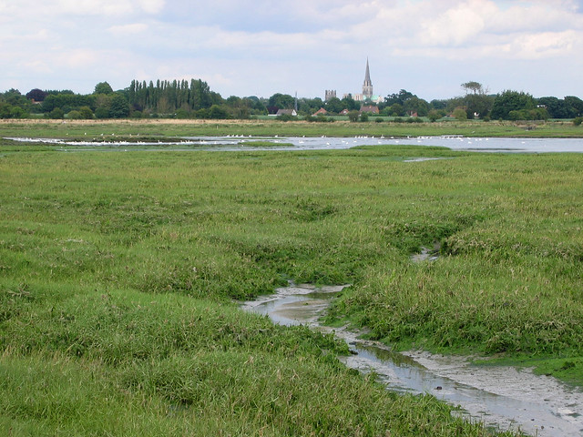 Chichester harbour south of Fishbourne