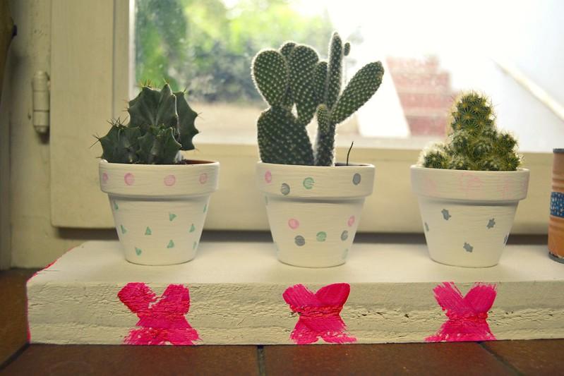 cactusitos 2