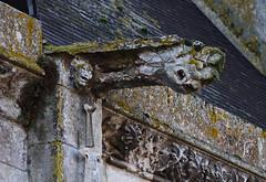 Gargoyle on Saint-André