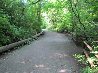 Ravenna Park