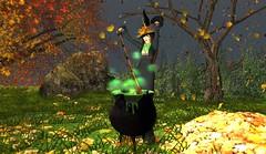 Witching Night_005