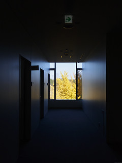 autumn at the end of a corridor