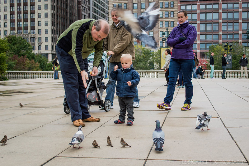 Boy Feeding Pigeons at the Bean (Cloud Gate) in Chicago Millennium Park