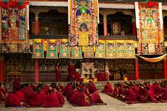 Monks, Thashilhunpo Monasteru