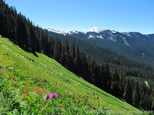 The first meadows on the Canyon Ridge Trail, Mt. Baker-Snoqualmie National Forest, Washington