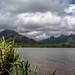 20140922-hawaii-ohau-0315.jpg