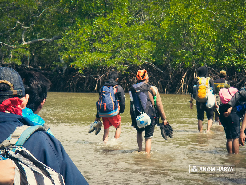 Susur pantai Teluk Semut