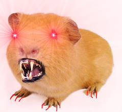 guinea pig(0.0), pet(0.0), mouse(0.0), muridae(0.0), pink(0.0), animal(1.0), rodent(1.0), hamster(1.0), whiskers(1.0),
