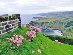 Les Açores, l'île de Sao Miguel
