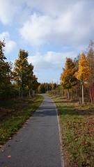 2014.10.12 - Berlin surroundings - Autumn Bike ride
