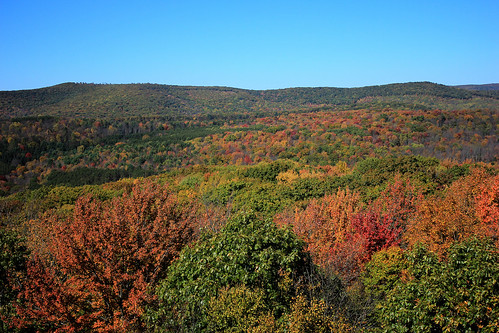 autumn landscape october fallcolor firetower sunnyday tiogacounty northcentralpennysylvania