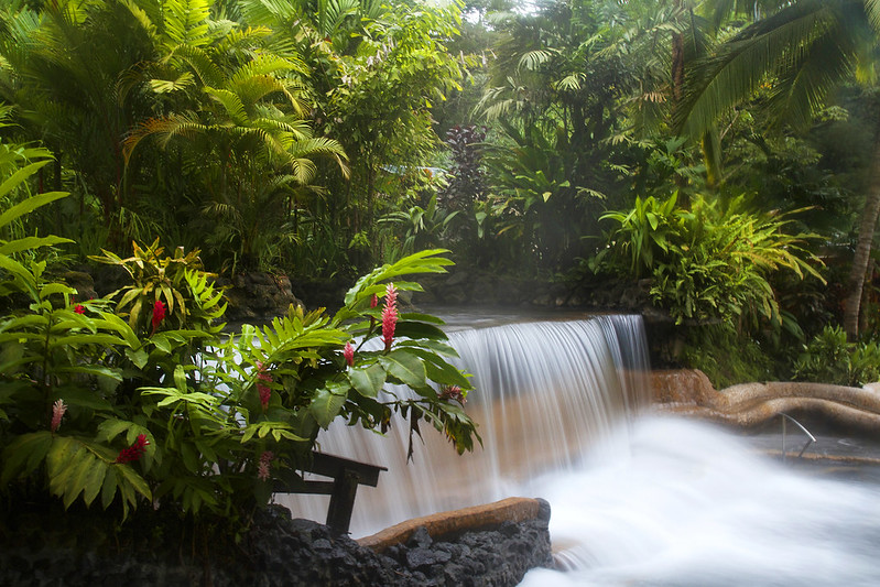 Waterfall - Tabacon Hot Springs - Costa Rica