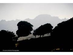 ikaria's_mountains