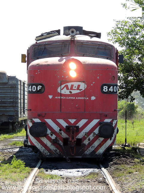 ALCO FPD7 8406 LUCIANA