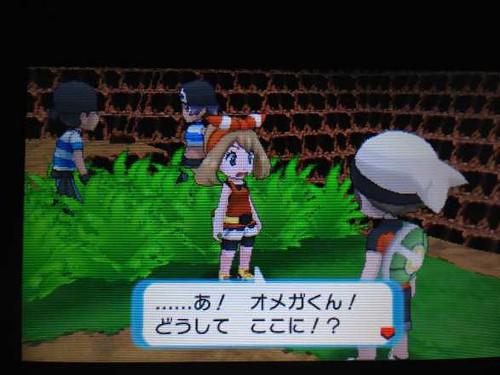pokemonORAS_trial_5_141109
