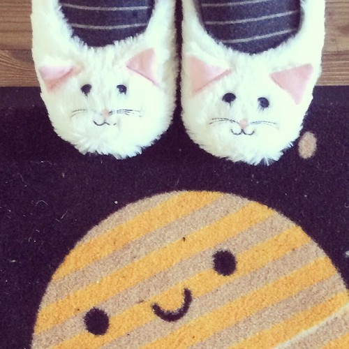 Yay, got my kitty slippers thanks to @jijipunch! This is the postman's view now.