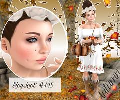 Blog look #145