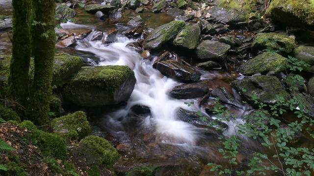 Owengarriff River