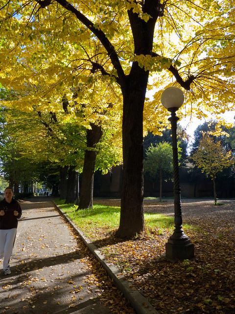 Anna Cassese - A park Florence