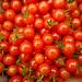 Tomato 'sweet pea currant'